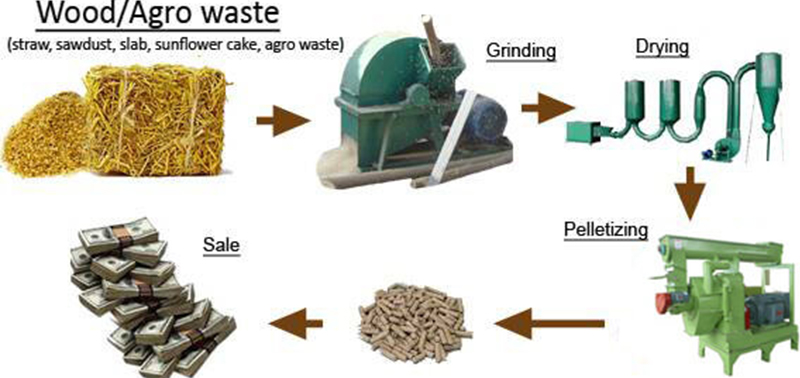 Production Advantages Of Wood Pellet Machine For Biomass Industry