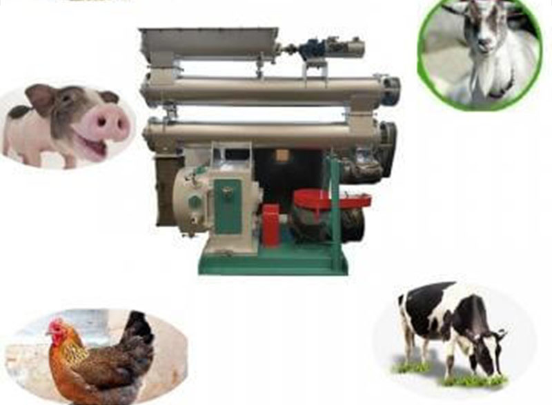 Pellet Making Machinery For Producing Feed Pellets