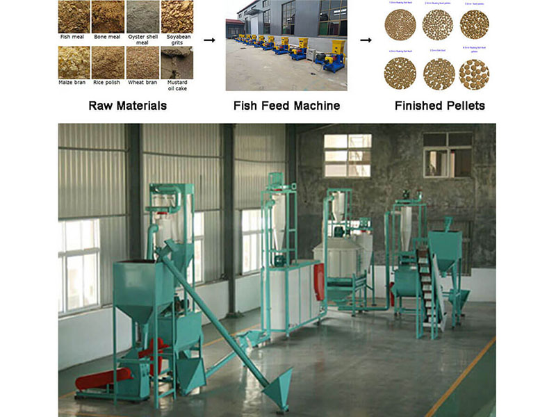 How To Choose Floating Fish Feed Machine And Its Auxiliary Equipment
