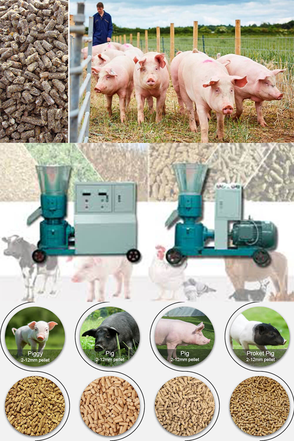 Poultry Feed Pellet Mill Machine Make Pig Feed Pellets