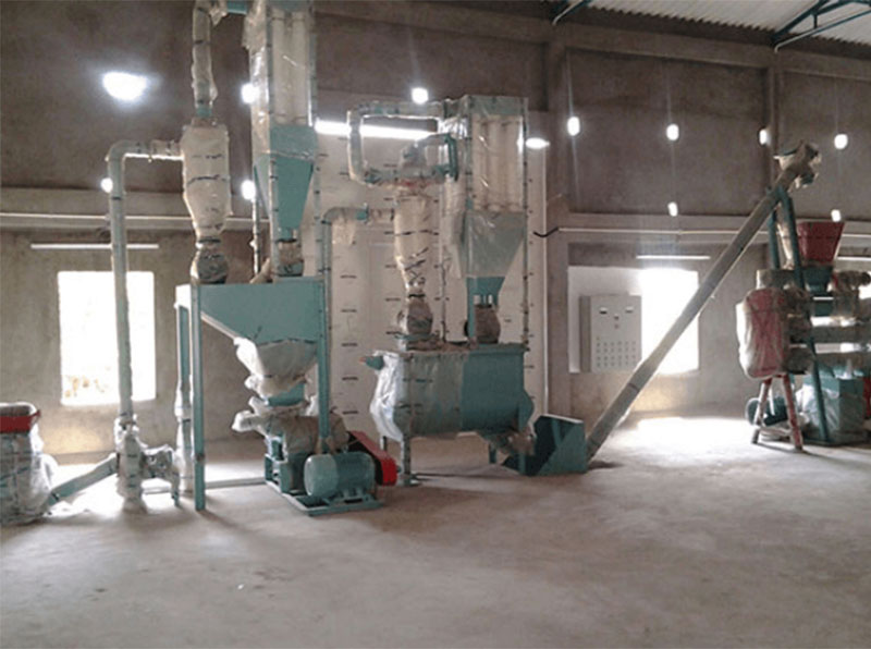 Things You Need To Know The Small Fish Feed Production Line