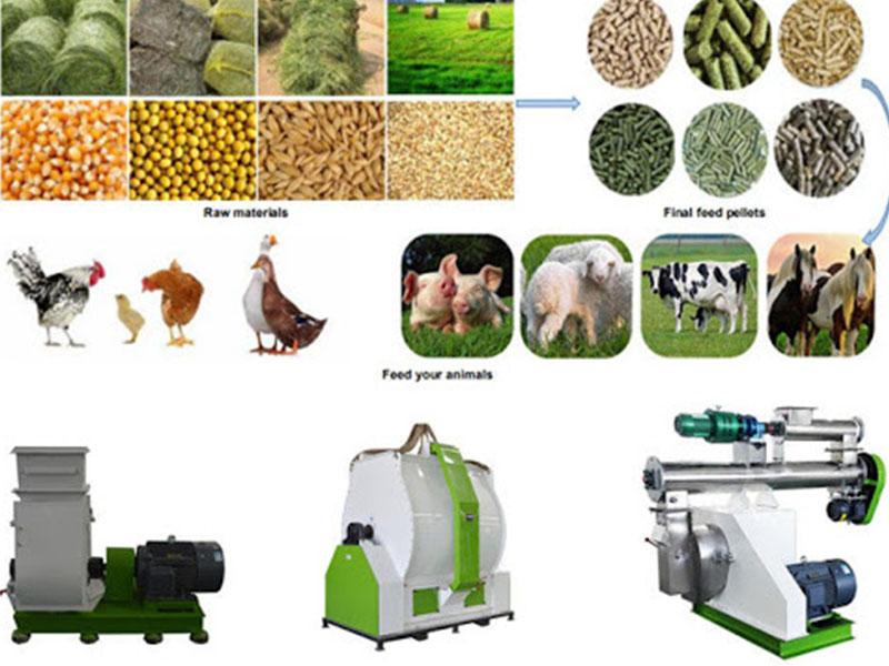 Chicken Feed Pellet Mill For Farm Use