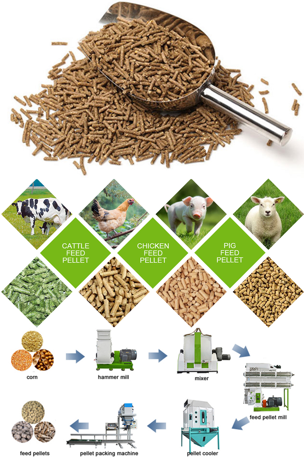 Feed Mill Equipment In Animal Feed Pellet Plant