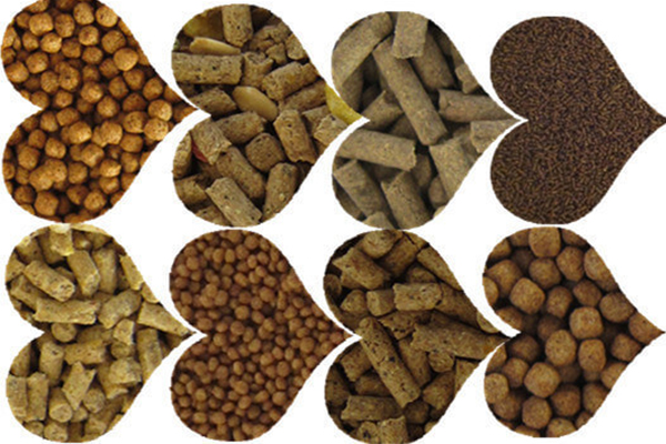 Technical Requirements Of Straw Pellet Machine For Different Materials