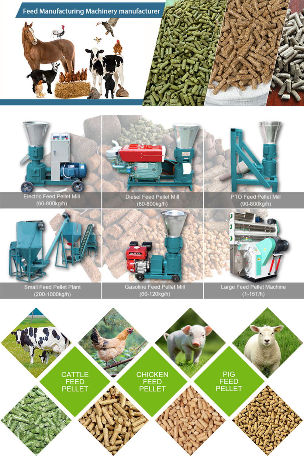 Setting Up A Poultry Feed Production Plant