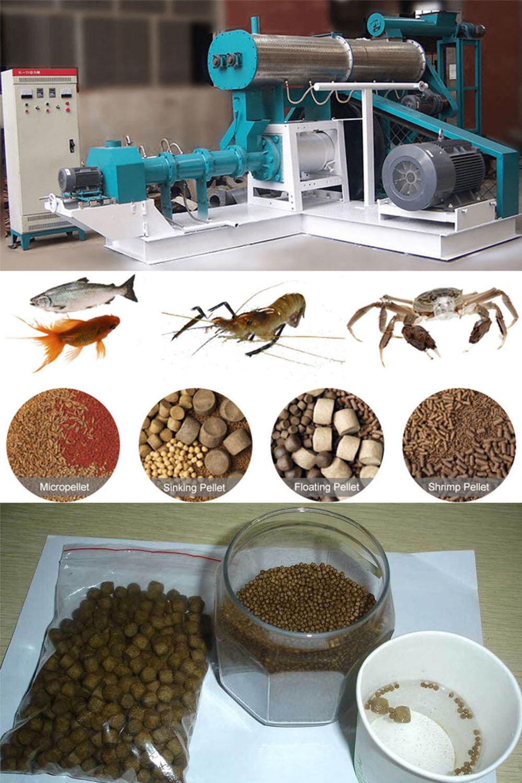 Best Fish Feed Pellet Machine Manufacturer