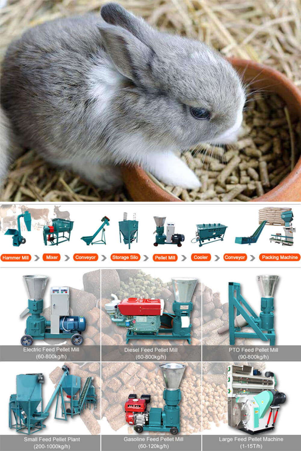 Feed Pellet Mill Machine Can Make Feed Pellets For Rabbit