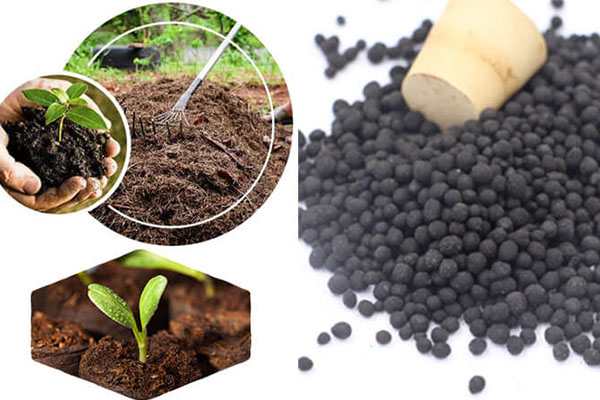 That's What You Need To Know To Start An Organic Fertilizer Plant