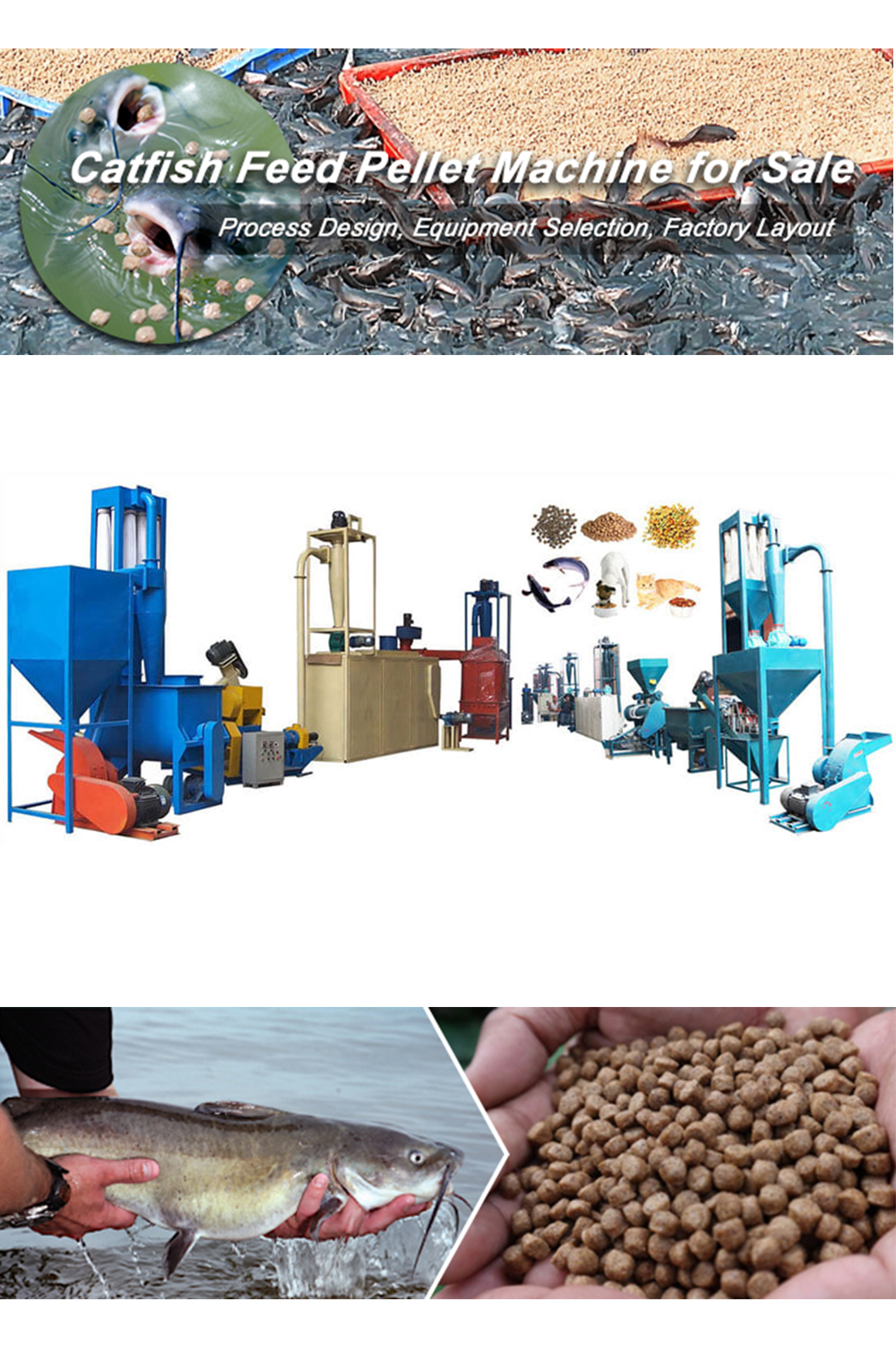 Catfish Feed Pellet Machine To Make High Quality Feed