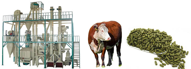 Superior Quality Cattle Feed Pellet Plant