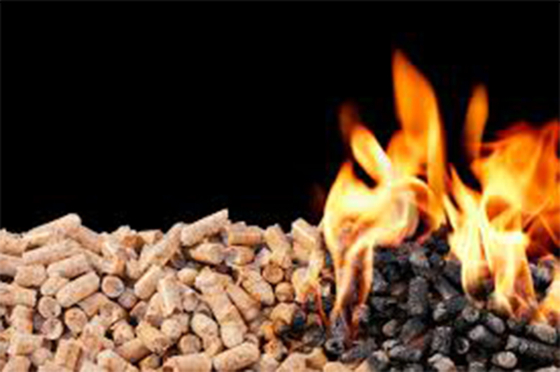 The Important Contribution Of Wood Pellet Machine In The New Energy Industry