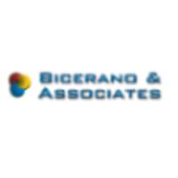 Bicerano & Associates Consulting