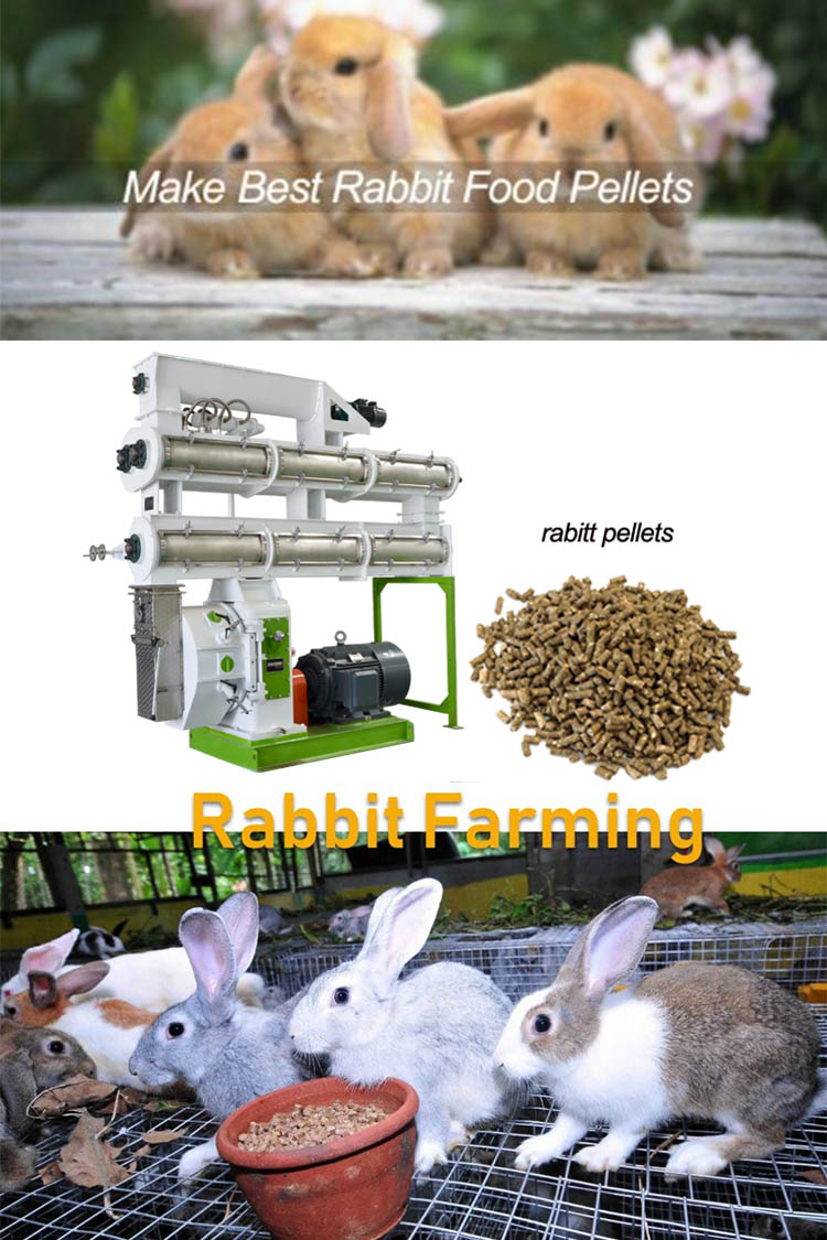 Making The Best Rabbit Food Pellets With Animal Feed Mill