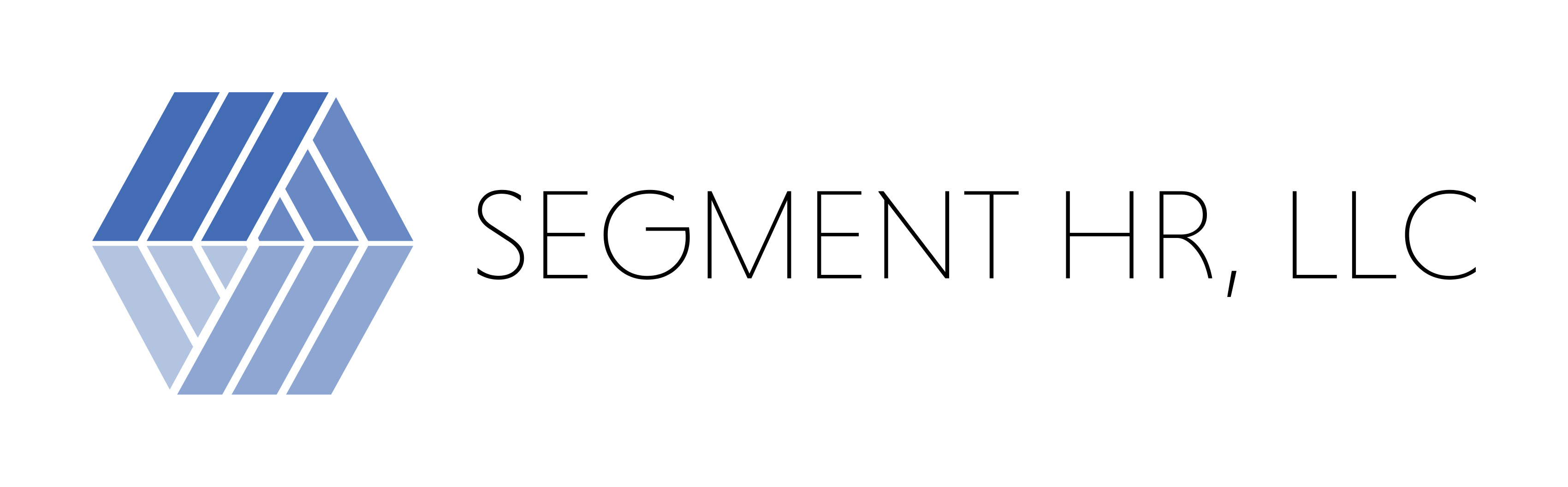 Segment HR LLC